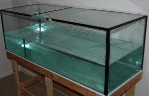 Стеклянный аквариум